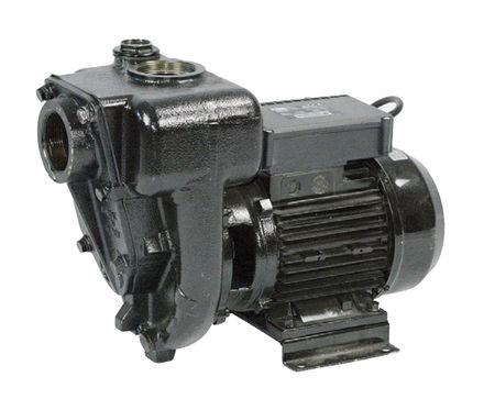 """Piusi E 300 Kreiselpumpe für Diesel, 230V 50Hz,  max. 550l/min., bedingt selbstansaugend. Anschlüsse 2"""", Sauganschluss mit Rückschlagklappe – Bild 2"""