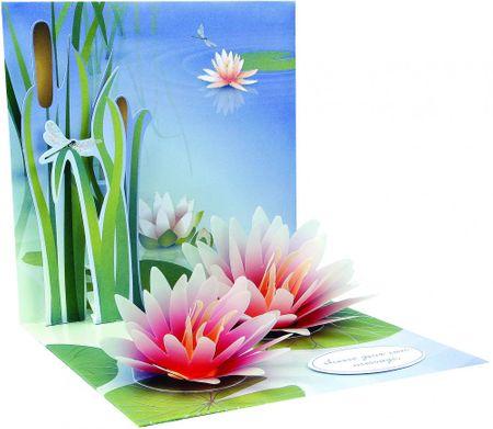 Pop Up 3D Geburtstag Liebe Grußkarte PopShot Seerose in See 13x13cm