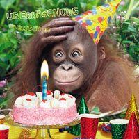 Geburtstag Humor Grußkarte Googlies PopShot Birthday Überraschung Affe 16x16cm