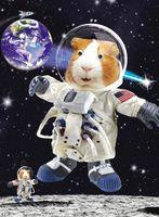 Geburtstag Humor Grußkarte Googlies Wackelaugen Weltraum Astronaut 12x17cm