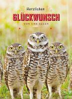 Geburtstag Humor Grußkarte Googlies Wackelaugen Herzlichen Glückwunsch von uns Allen 3 UHU 12x17cm