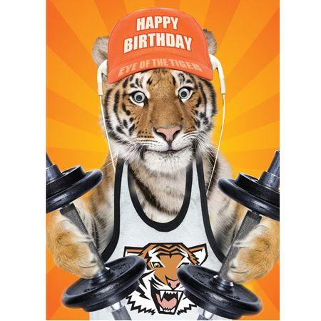 Geburtstag Humor Grußkarte Googlies Wackelaugen Happy Birthday Fitness Tiger 12x17cm