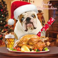 Weihnachten Humor Grußkarte Googlies Wackelaugen Hund mit Gans Frohe Weihnachten 16x16cm