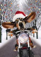 Riesen Weihnachten Humor Grußkarte Googlies Wackelaugen Hund auf dem Motorrad A4