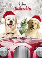 Riesen Weihnachten Humor Grußkarte Googlies Wackelaugen Hunde Ausflug Frohe Weihnachten A4