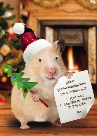 Weihnachten Humor Grußkarte Googlies Wackelaugen Hamster mit Wunschzettel 12x17cm