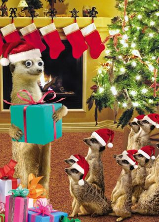 Weihnachten Humor Grußkarte Googlies Wackelaugen Erdmännchen Bescherung 12x17cm