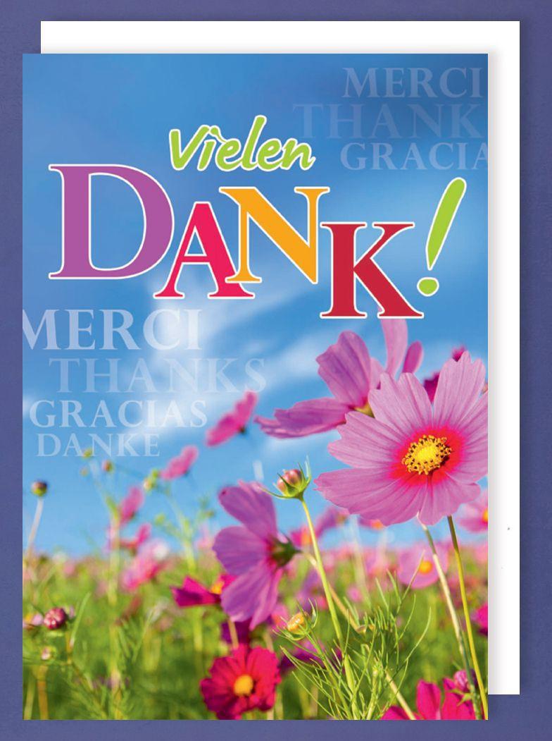 Riesen Grußkarte Danke AvanStyle Maxi Merci Thanks Gracias A4