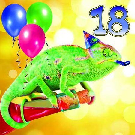 Grußkarte Geburtstag 18 Tracks Humor Party Leguan 16x16cm