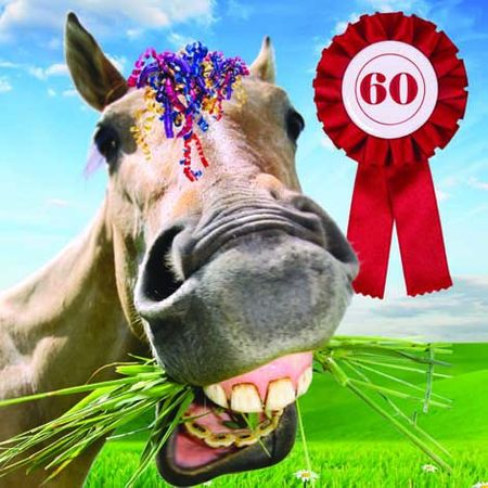 Grußkarte Geburtstag 60 Tracks Humor Lachendes Pferd 16x16cm