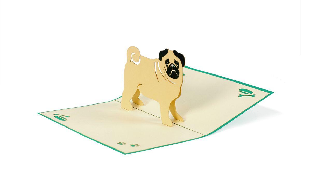Hund 3 D Pop Up Grusskarte Geburtstag Mops Geldgeschenk Handmade