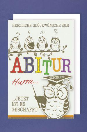 Abitur Karte Abi Grußkarte Weise Eulen Gratulieren Foliendruck 16x11cm