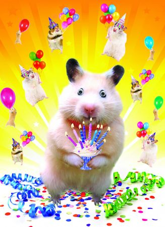 4C1356 Gogglies Maxi Karte Happy Birthday Hamster A4 30,6 x 22,4cm