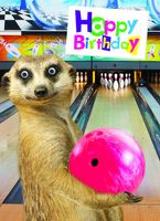 4H269 Gogglies Maxi Karte Happy Birthday Bowling A4 30,6 x 22,4cm