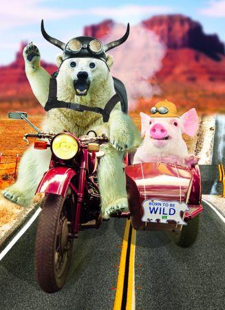 4H270 Gogglies Maxi Karte Born to be wild Motorrad A4 30,6 x 22,4cm