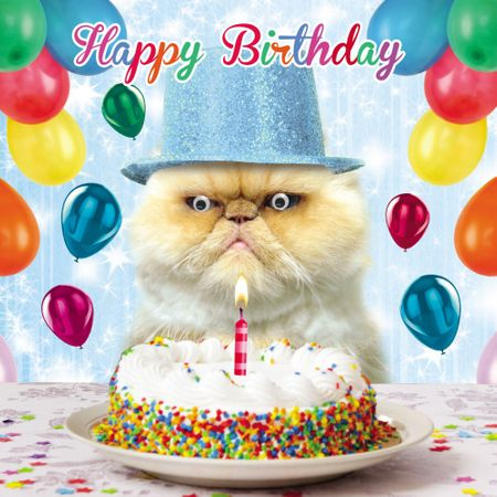 3C1451 Gogglies Square Karte Happy Birthday Crazy Cat 16x16cm