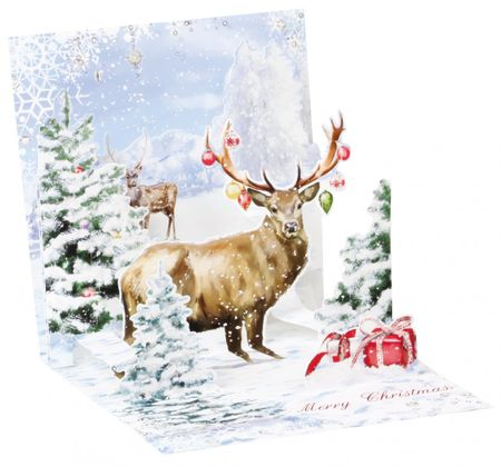 Display Card for 1259 Stag