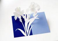 UWP LUXE 6er Karten-Set Grußkarten 6 verschiedene Blumen Motive 15x10cm