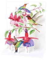 SOUND Pop Up 3D Karte Kinder Geburtstag Musik Kolibri Vogel 18x13cm