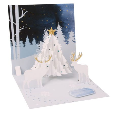 - NEW Display Card for 1310 White Tree