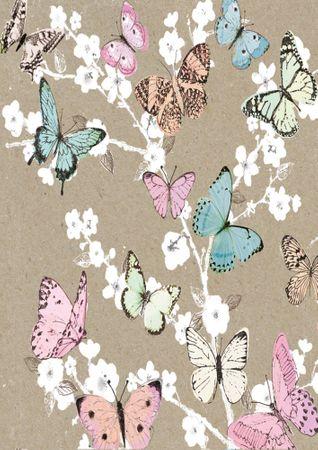 DE043  B6 Grußkarte Schmetterlinge