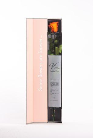 Rose Geschenk lange haltbar echte konservierte Blume Exclusiver Geschenkkarton Farbe Orange 50cm
