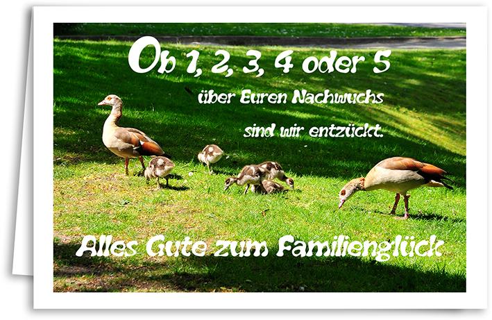 Geburt Yabue Foto-Karte Grußkarte Enten Familie 16x11cm