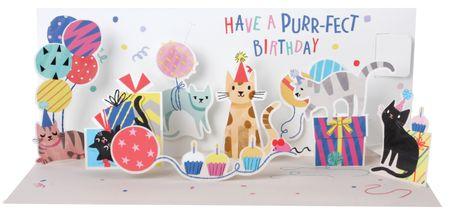 - NEW! A309 Birthday Parrots