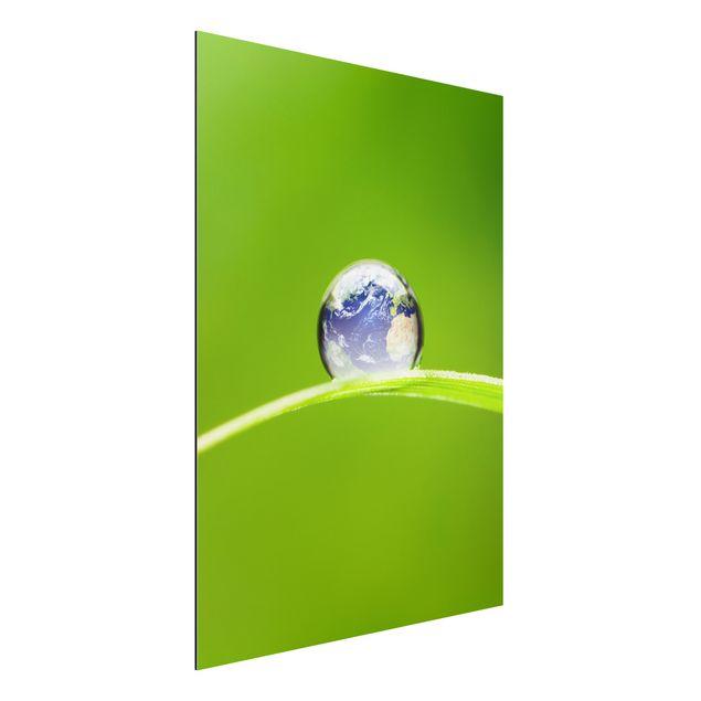 Aluminium Print - Wandbild Grüne...
