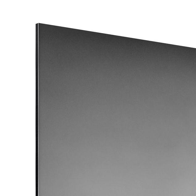 Produktfoto Aluminium Print - Wandbild Hippo Fight - Quer 3:4
