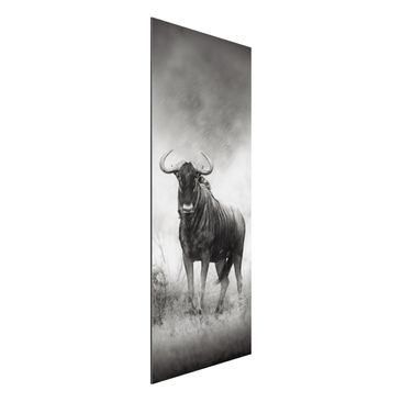 Produktfoto Aluminium Print - Wandbild Staring Wildebeest - Panorama Hoch