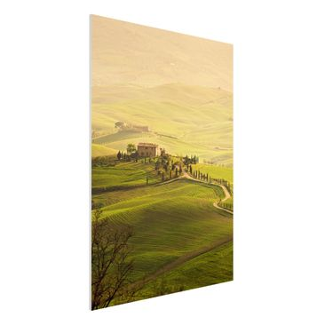 Product picture Forex Fine Art Print - Mural Chianti...