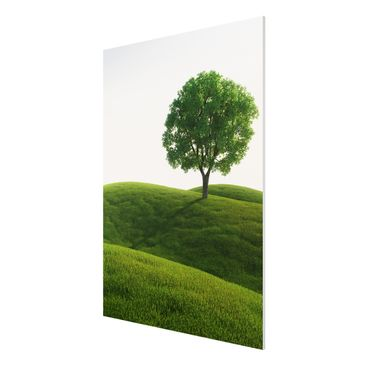 Product picture Forex Fine Art Print - Mural Green peace...