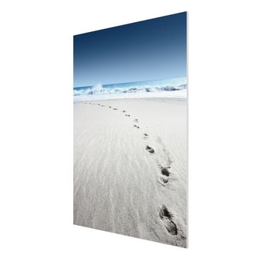 Product picture Forex Fine Art Print - Mural Footprints...