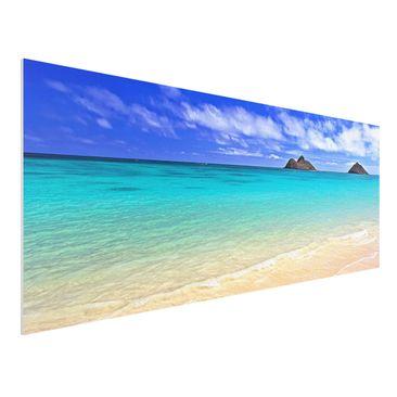 Produktfoto Forex Fine Art Print - Wandbild Paradise Beach - Panorama Quer