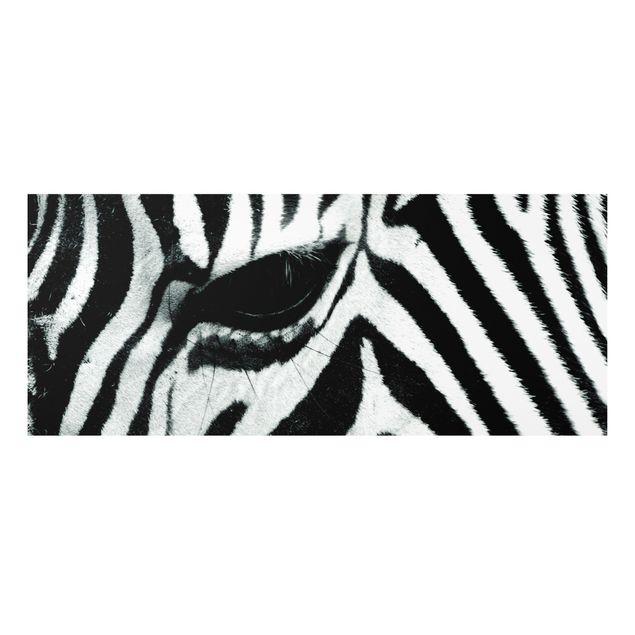 Produktfoto Forex Fine Art Print - Wandbild Zebra Crossing No.2 - Panorama Quer