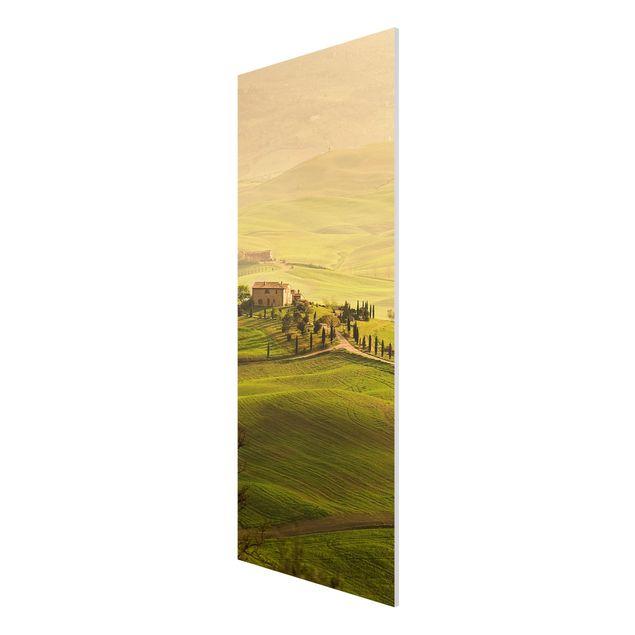 Produktfoto Forex Fine Art Print - Wandbild Chianti Toskana - Panorama Hoch
