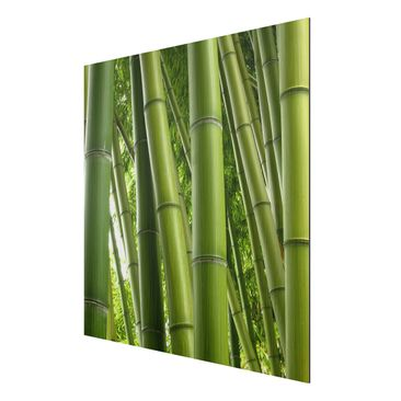 Product picture Aluminium Print brushed - Mural Bamboo...