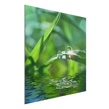 Product picture Aluminium Print brushed - Mural Green...