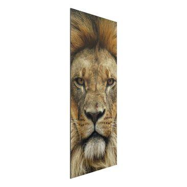 Immagine del prodotto Stampa su alluminio spazzolato - Wisdom of Lion - Pannello