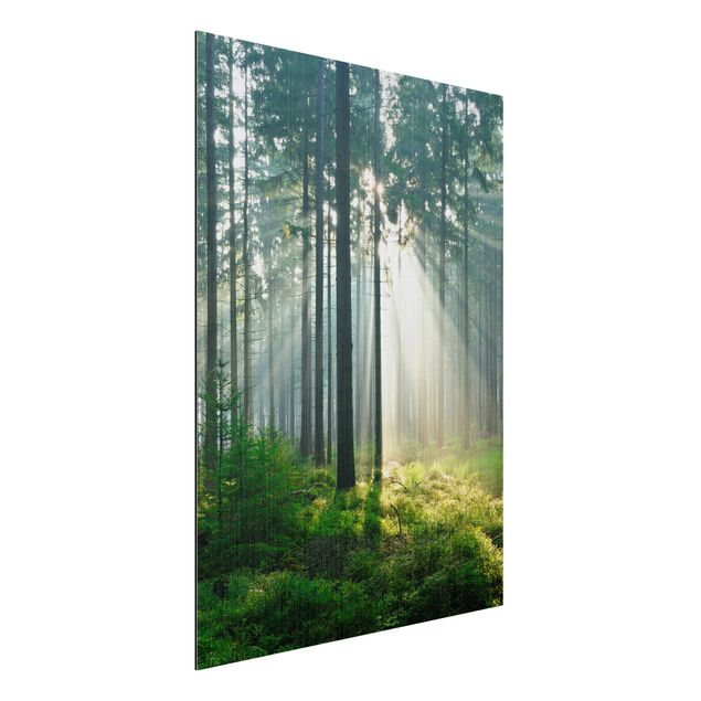 Produktfoto Aluminium Print gebürstet - Wandbild Enlightened Forest - Hoch 4:3