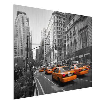Immagine del prodotto Stampa su alluminio spazzolato - New...