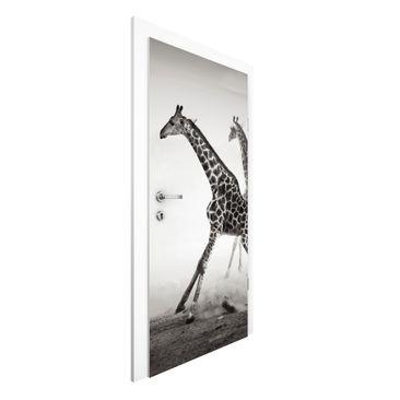 Immagine del prodotto Carta da parati per porte - Giraffe Hunting - 215cm x 96cm