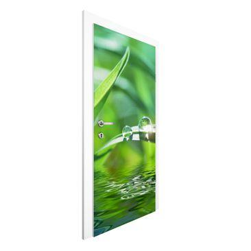 Immagine del prodotto Carta da parati per porte - Green Ambiance II - 215cm x 96cm