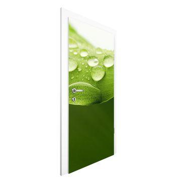 Produktfoto Vliestapete Tür Premium - Drops of...