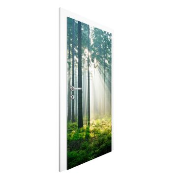 Immagine del prodotto Carta da parati per porte Premium - Enlightened Forest - 215cm x 96cm