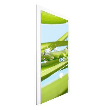 Immagine del prodotto Carta da parati per porte Premium - Fresh Green - 215cm x 96cm