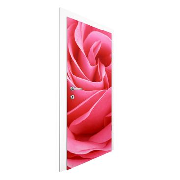 Produktfoto Vliestapete Tür Premium - Lustful Pink Rose - Türtapete