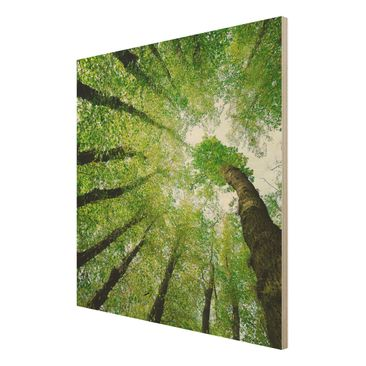 Product picture Wood Print - Trees of life - Square 1:1
