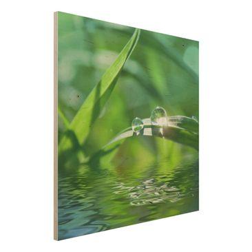 Immagine del prodotto Stampa su legno - Green Ambiance II - Quadrato 1:1